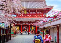 Japanese OEM rtmworld