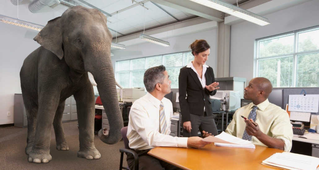 What Independent Resellers of Printer Supplies Expect elephant in the office